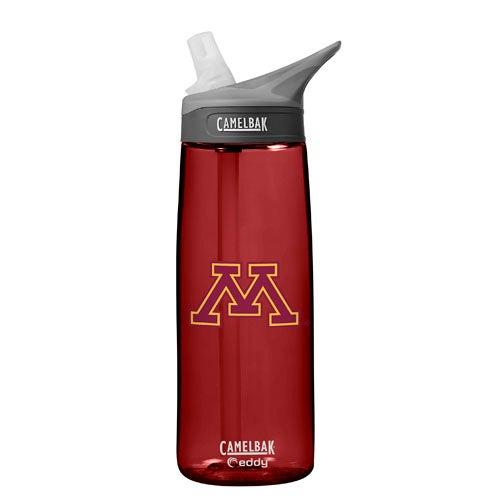 NCAA Minnesota Golden Gophers 0.75L Eddy Water Bottle