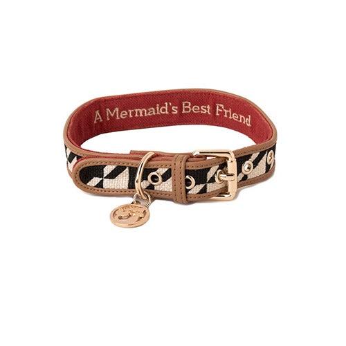 Stoddard Dog Collar, Medium