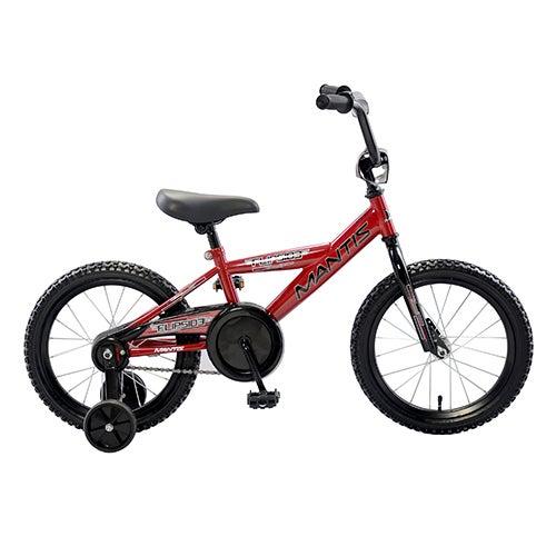 """Flipside 16"""" Boys Bicycle"""