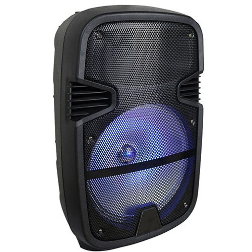 "12"" Portable Party Speaker"